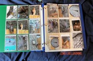 Nature Journal, Photo Pages