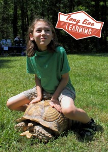 Smithgall-Woods Kids Adventure Petting Zoo