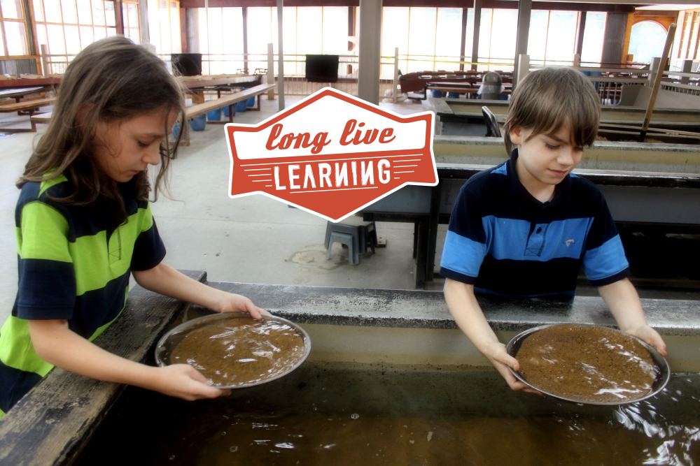 Gold Panning at Consolidated Gold Mine