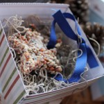 Three crafty bird feeders to make for winter