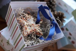 Nature Craft, Bird Seed Ornaments