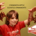 Homemade Cinnamon Apple Scented Ornaments