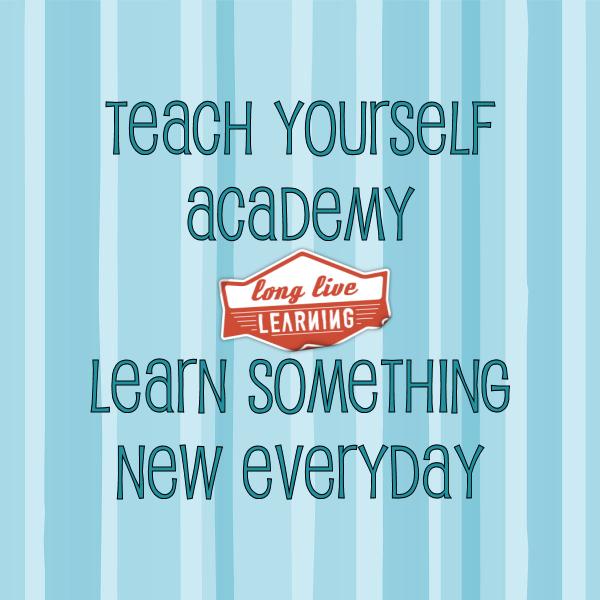 Teach Yourself Academy