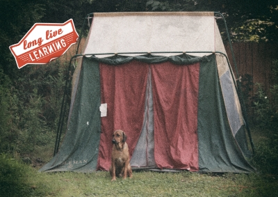 camping-dogandtent