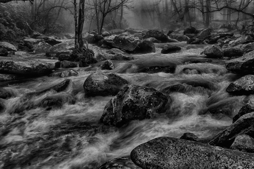 FoggyMtnRiver-waterinnature-January 2014-CandyCook