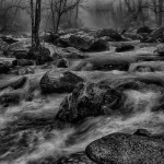 "Chattahoochee Nature Center ""Water in Nature"" Photography Exhibit"