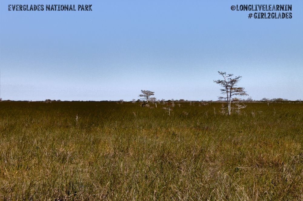 Everglades National Park: My Journey to Back Country Kayak Camping #girl2glades