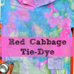 Red Cabbage Tie Dye from BlogMeMom
