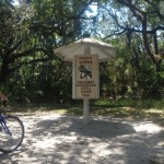 Jekyll Island & Georgia's Coastal Greenway Trails