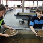 Gold Panning and Mine Tour in Dahlonega, Georgia