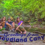 Camp Cook Chronicles: Greetings From Cloudland Canyon