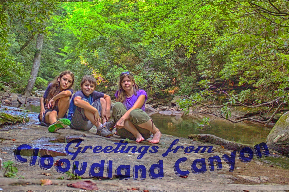 Greetings from Cloudland Canyon