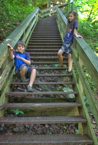 Cloudland Canyon Stairs