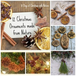12 Homemade Ornaments from Nature
