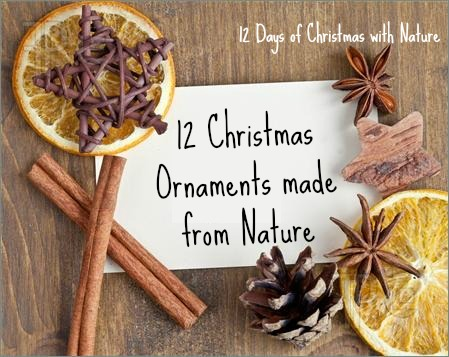 12 Christmas Ornaments made from Nature