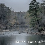 Making Way for Winter at Sweetwater Creek State Park