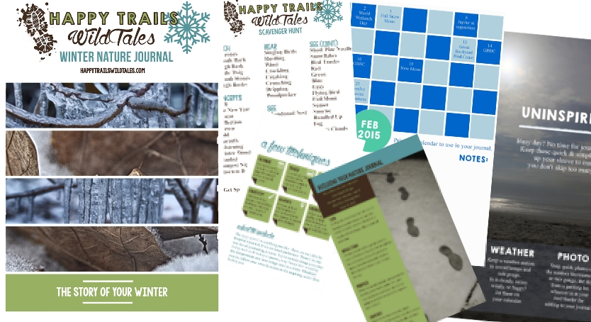 Winter Nature Journal Preview