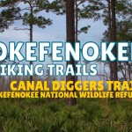 Okefenokee Hiking Trails – Canal Diggers Trail, Okefenokee National Wildlife Refuge