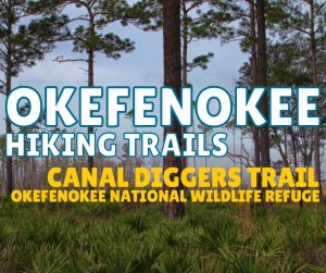 Okefenokee Hiking Trails - Canal Diggers Trail