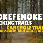 Okefenokee Hiking Trails – Cane Pole Trail, Okefenokee National Wildlife Refuge