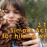 3 Things: Simple Activities to do while Hiking with Kids #1