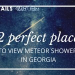 12 Perfect Places to view Meteor Showers in Georgia