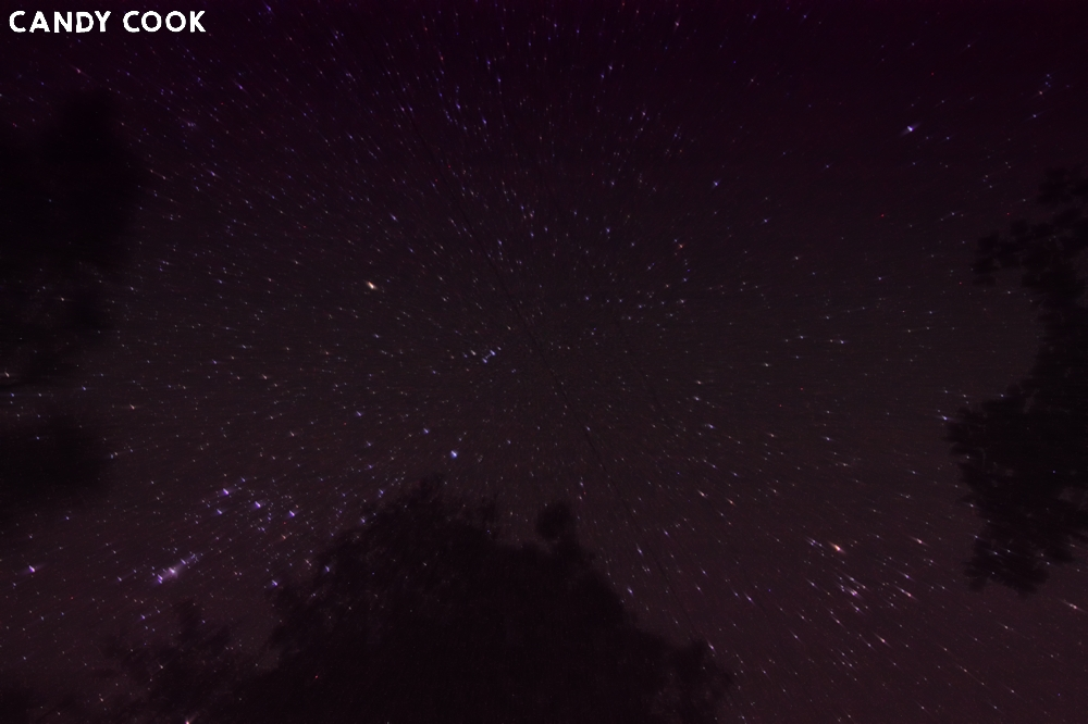 Stars over Okefenokee