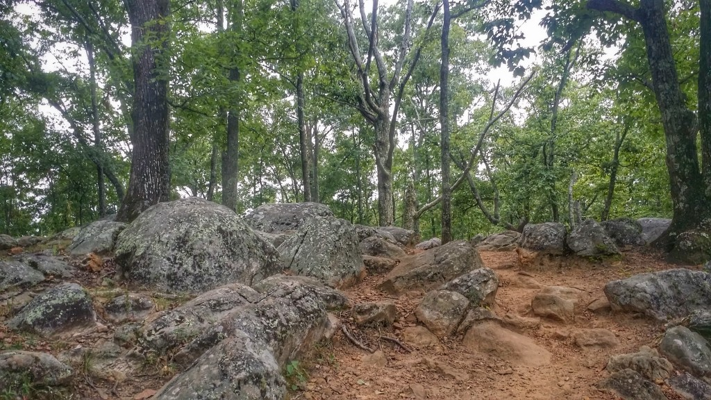 Hiking Little Kennesaw Mountain Rock Gardens