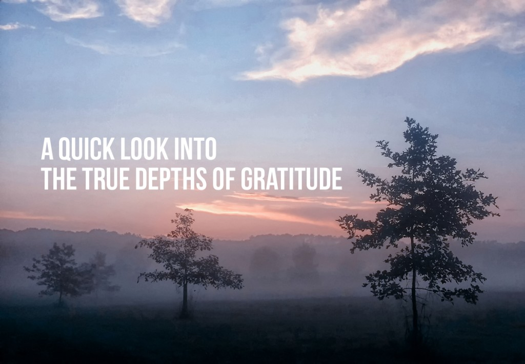 A quick look into the true depths of gratitude