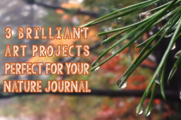 3 brilliant art projects perfect for your nature journal
