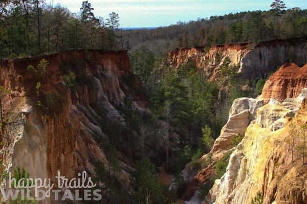 Providence Canyon: A little grand canyon adventure in Georgia