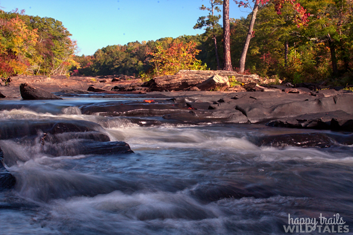 Sweetwater, River of Rocks
