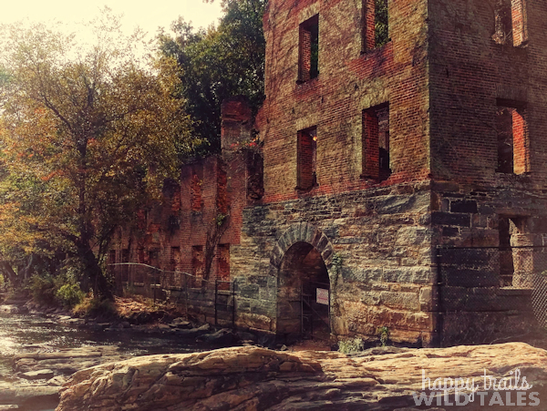 Sweetwater Ruins, Hunger Games